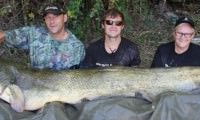 ebro hunters im angelcamp von taffi tackle tours in mequinenza