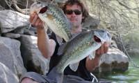 barschfischen am ebro in mequinenza bei taffi tackle tours