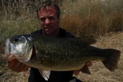 schwarzbarsch angeln in mequinenza spanien bei taffi tackle tours