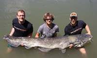 angeltouren am ebro mit den guides von taffi tackle tours