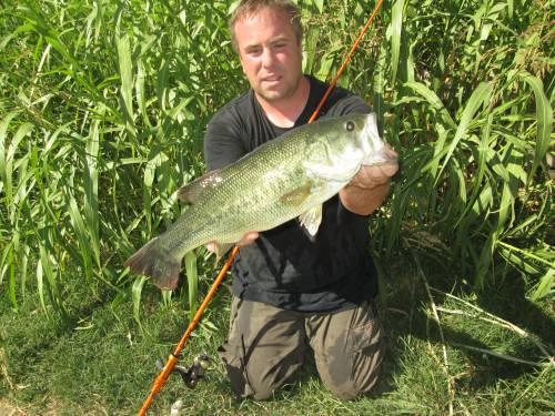schwarzbarsch fischen am ebro mit taffi tackle tours