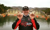 flussbarsch angeln im angelcamp in mequinenza bei taffi tackle tours