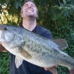 schwarzbarsch angeln in mequinenza mit taffi tackle tours