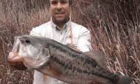 schwarzbarsch angeln in spanien im angelcamp von taffi tackle tours