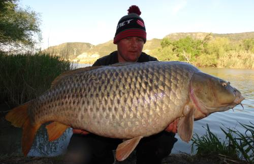 25kg karpfen aus spanien bei taffi tackle tours