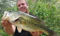 big black bass bei taffi tackle tours