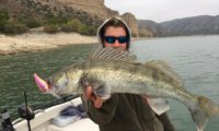 vertikal zander bei den guidingtouren in spanien von taffi tackle tours