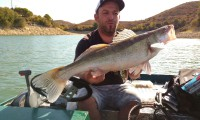 pelgic zander am ebro im angelcamp von taffi tackle tours in spanien