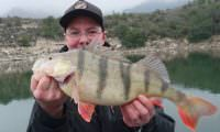 barschguiding am ebro bei taffi tackle tours
