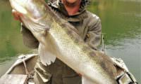 super zander aus em cinca in spanien bei taffi tackle tours