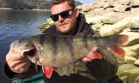 monterbarsch am ebro bei taffi tackle tours