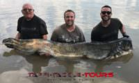 wallerangeln am segre in spanien bei taffi tackle tours