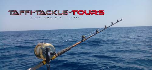 thunfisch rute bei taffi tackle tours