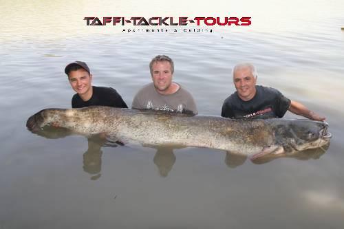 drei wallerjäger mit traumfisch bei Taffi Tackle Tours