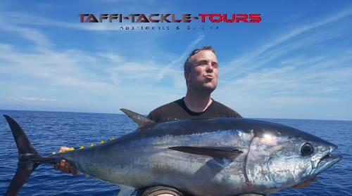 rießen thunfisch bei den meerestouren von taffi tackle tours