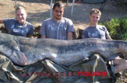 Wallerangeln in Spanien bei taffi tackle tours