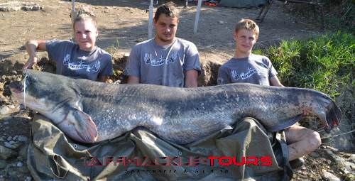 Wallerangeln in Spanien bei taffi tackle tours