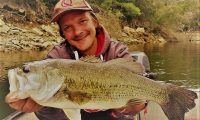 Barschangeln am Ebro im angelcamp von taffi tackle tours in mequinenza spanien