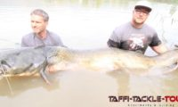 endgegner waller vom angelcamp am ebro bei taffi tackle tours