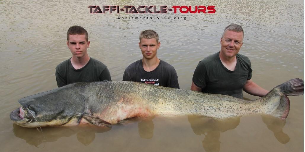 wallerangeln in mequinenza im wallercamp bei taffi tackle tours