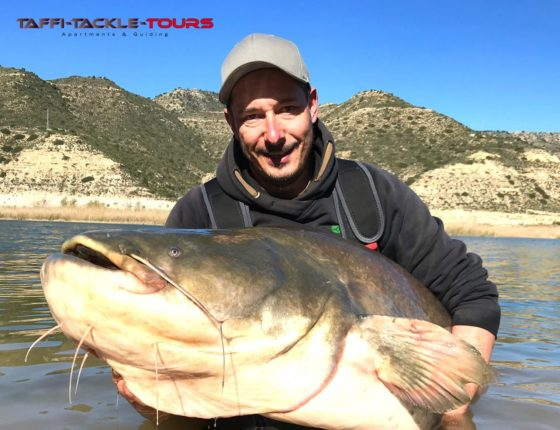 welsangeln in mequinenza im angelcamp am ebro von taffi tackle tours