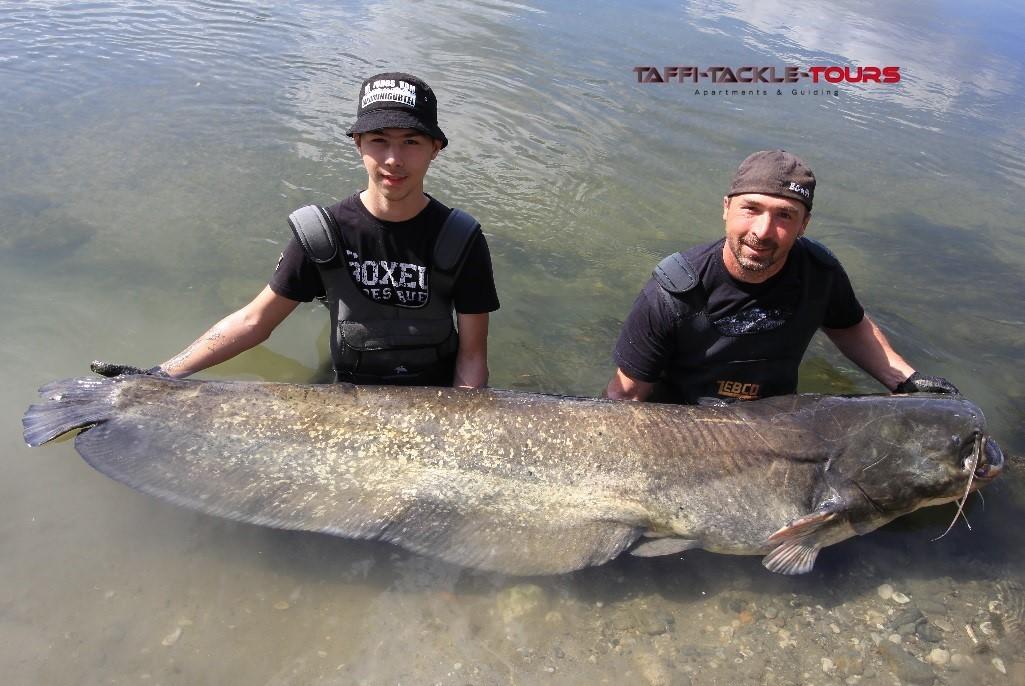 ebro fischen in spanien im wallercamp von taffi tackle tours in mequinenza
