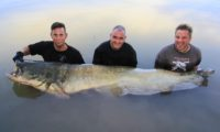 monsterfisch beim vollguiding bei taffi tackle tours