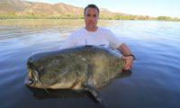 41. guidingfisch über 2,50m bei meinen guidingtouren bei taffi tackle tours