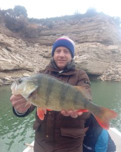 barsch angeln in spanien bei taffi tackle tours in mequinenza